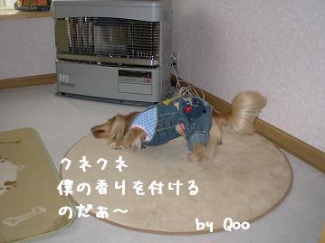 4.12 QOO