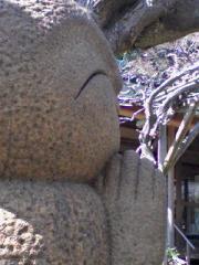 kawaiihase080315_1229~01