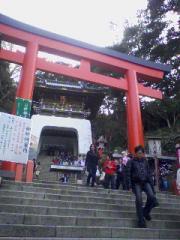 torii080315_1615~01