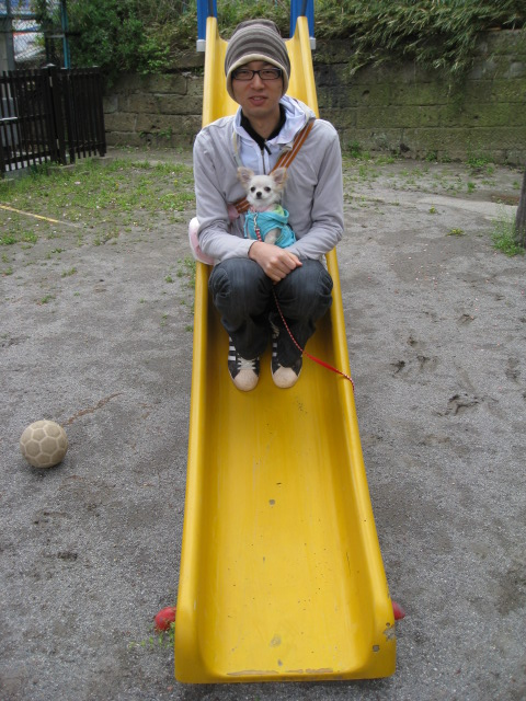 dogly038.jpg