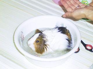 風呂07042