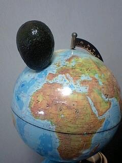 アボカド衝突