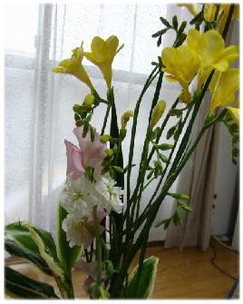 彩の生け花