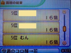 P1000093.jpg