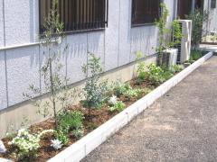 Garden 07/05/04