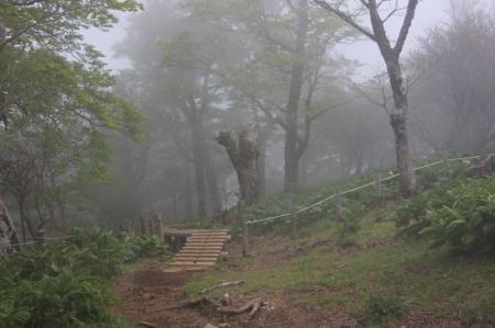 霧がかってきた頂上