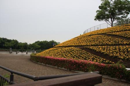 大花壇と水の広場