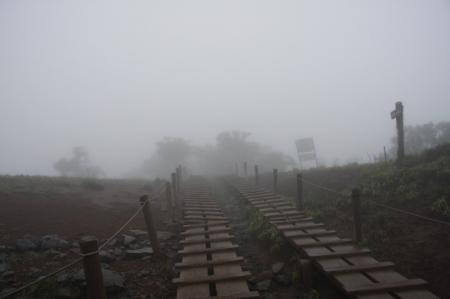 霧雨の中。。