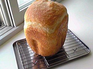 天然酵母パン080623