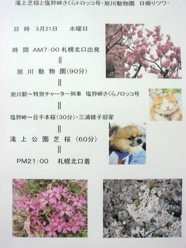DSC04772.jpg
