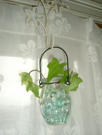 セリア花瓶&アイビー