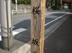 P4120117.jpg