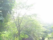07-17 夏の日射し2