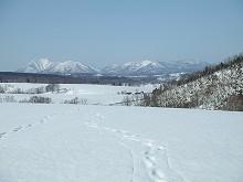 080322 牧草畑から見るピンネシリ岳