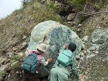 080529蛇紋岩001