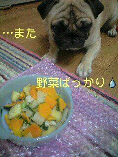 また野菜だよ