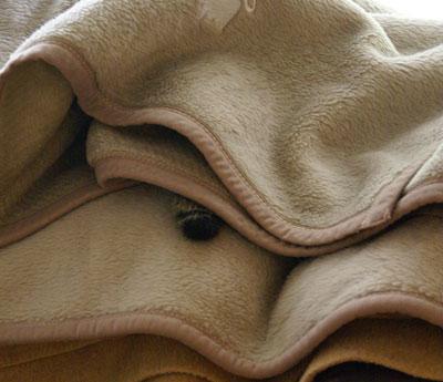 お客様用毛布1