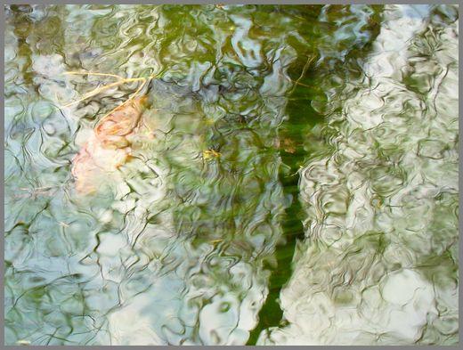 小川の水面