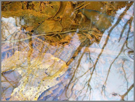さび色の小川
