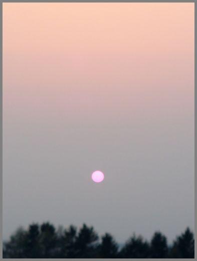 さくらいろの夕日