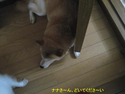 どいて_1