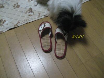 がじがじ_1