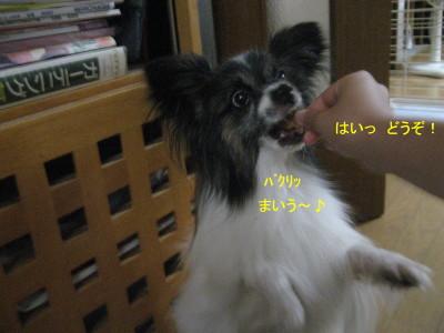 まいうー_1