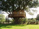 treehousekildare