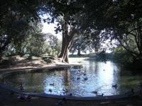 stannespark1