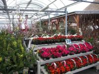 gardenworks1