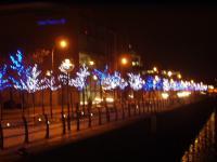 christmasdockland1