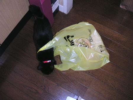 袋だにゃ~