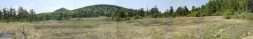 小渕沢湿原