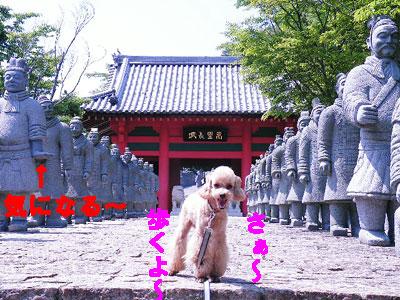 中国の萬里長城に出発~