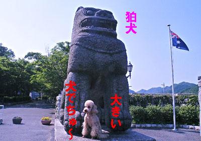 中国~狛犬~