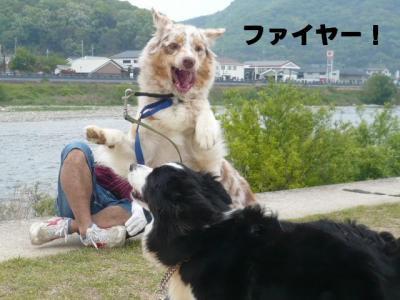 コピー ~ 神業