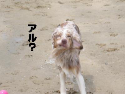 コピー ~ 変顔