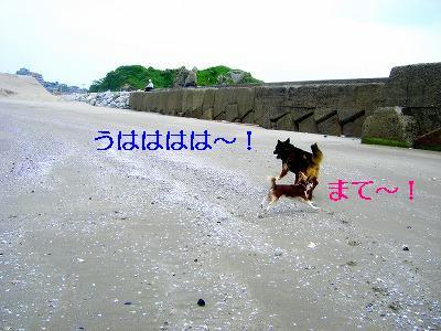 s-CIMG2559.jpg