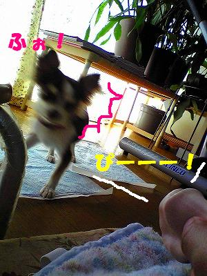 s-Image048.jpg