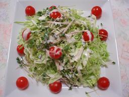 野菜の夕食1