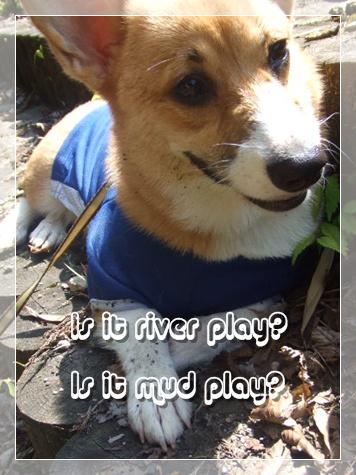 川遊び?泥遊び?