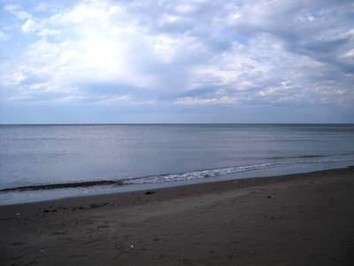 200805071.jpg