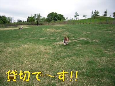 200805101.jpg