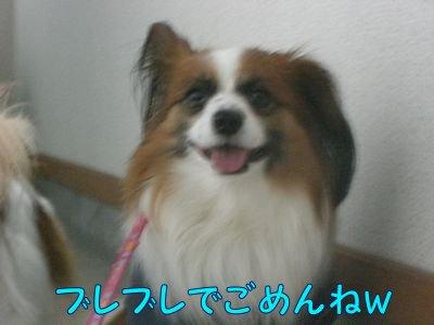 2008051410.jpg