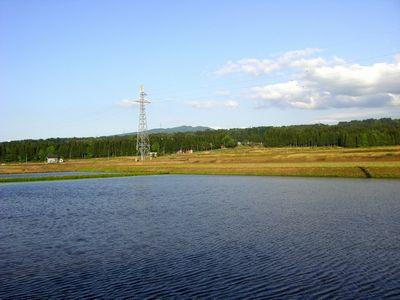 200805151.jpg