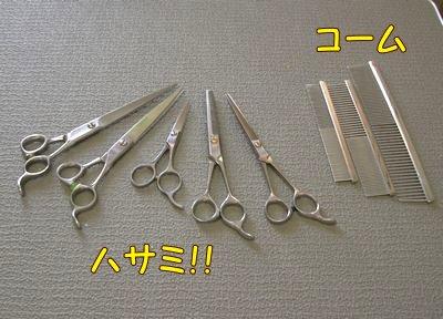 2008052614.jpg