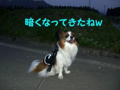 200805283.jpg