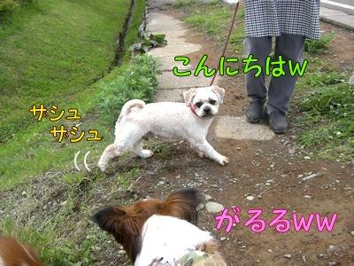 2008053012.jpg