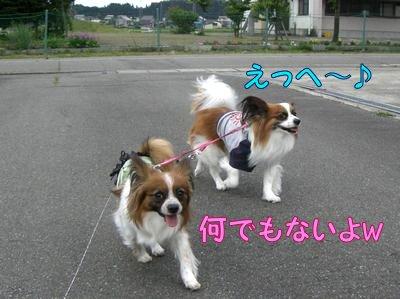 2008053014.jpg