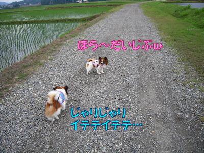 200806075.jpg